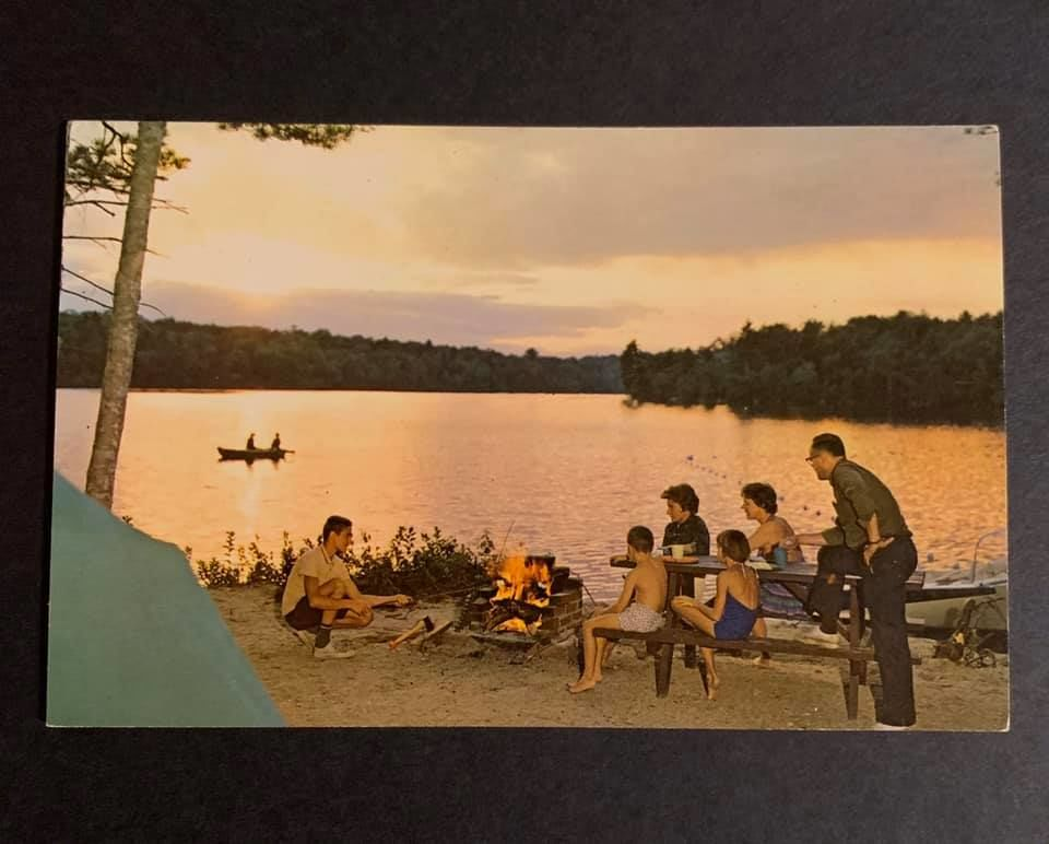 Loon's Haven Throwback
